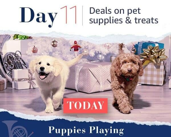 12 Days of Deals - Day 11
