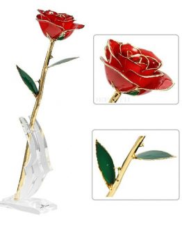 24K Gold Eternity Rose