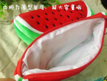 BIG Volume Watermelon Case