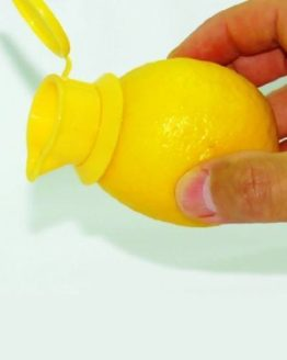 EcoJeannie Citrus Tap
