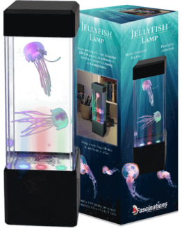Fascinations Jelly Fish Lamp